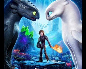 Cómo Entrenar A Tu Dragón 2: nintendo 3ds