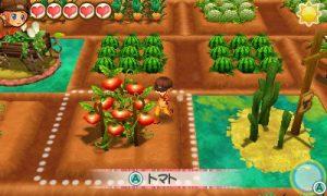 descargar Story of Seasons Trio of Towns CIA 3DS USA